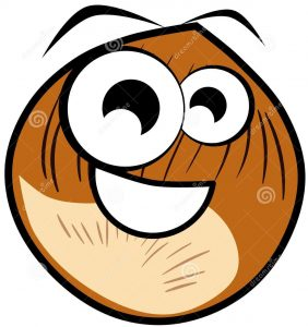 happy-nut-cartoon-isolated-illustration-image-representing-nice-hazelnut-version-nice-idea-can-be-used-projects-46217062